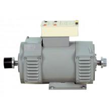 Shunt / Gescheiden DC motor